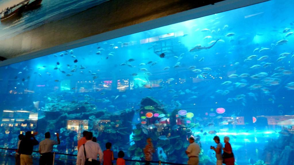 Acquario all'interno del centro commerciale The Dubai Mall
