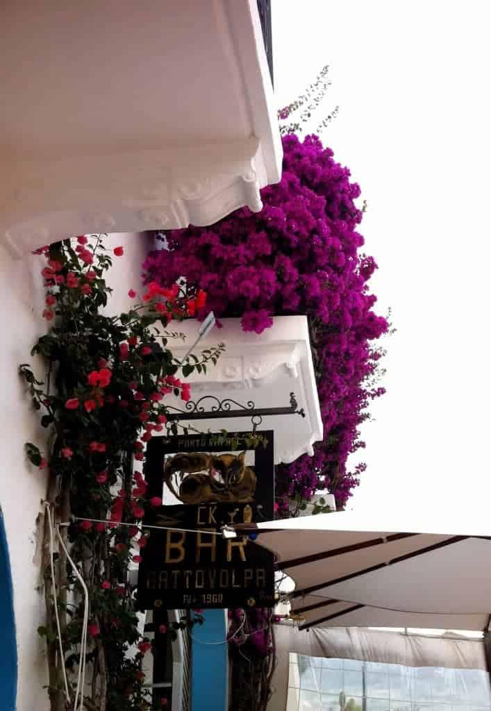 Storico bar salotto GattoVolpa in piazzetta a Porto Rafael