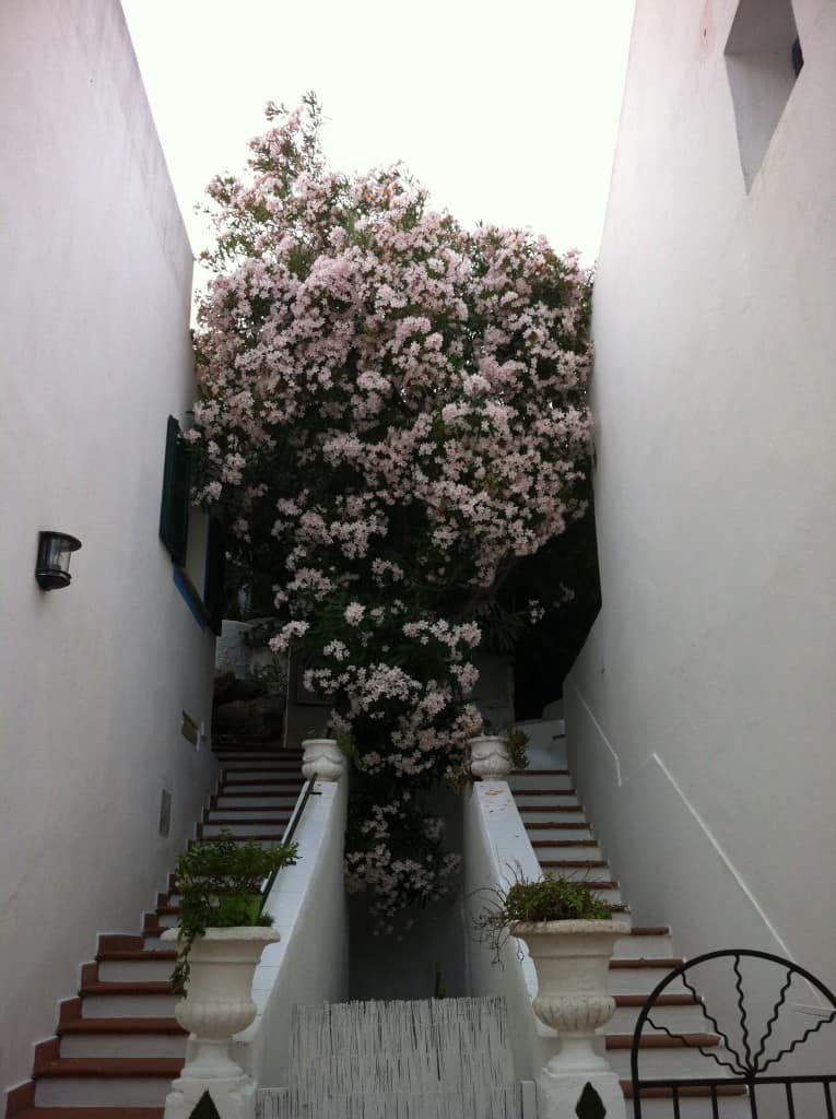Scorci di Porto Rafael