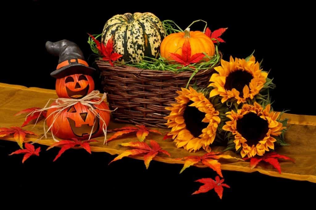 zucche & autunno