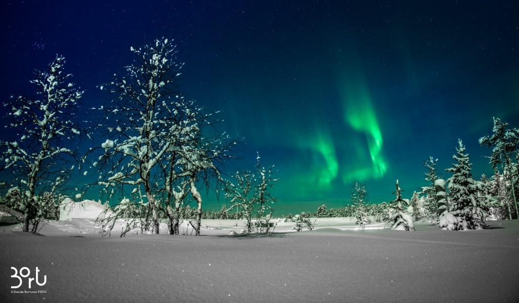 aurora boreale, luci, verde, colori, neve