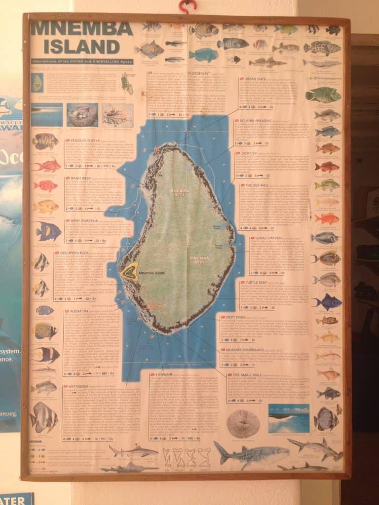 mnemba, atollo, pesci, snorkelling